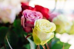 Sztuczne różowe i żółte róże Obraz Royalty Free