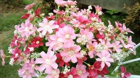Sztucznego kwiatu bukiet Zdjęcia Stock