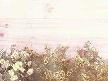 Sztucznego kwiatu gałąź na drewnianym tle robić z retro filtrowym kolorem Zdjęcie Royalty Free