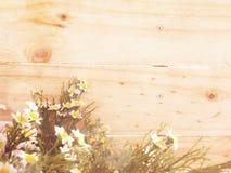 Sztucznego kwiatu gałąź na drewnianym tle robić z retro filtrowym kolorem Zdjęcia Stock