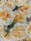 Sztucznego kwiatu wizerunku fotografia Fotografia Royalty Free