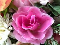 sztucznego tła kwiatu odosobniony biel Obraz Royalty Free