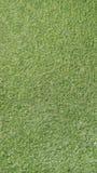 sztucznej trawy Zdjęcie Royalty Free