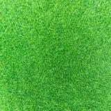 sztucznej trawy Obrazy Royalty Free