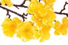Sztuczni kolorów żółtych kwiaty Zdjęcie Stock