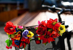 Sztuczni kwiaty na metalu roweru koszu zdjęcia royalty free
