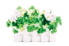 Sztuczni kwiaty odizolowywający na białym tle obrazy royalty free