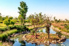 Sztuczny basen z kamieniami, kwiatami i drzewami w Dubaj safari parku, Zdjęcie Royalty Free
