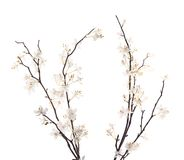 Sztuczny biały Sakura kwiat odizolowywający Zdjęcia Royalty Free
