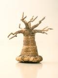 sztuczny drzewo Zdjęcia Stock