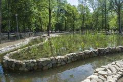 Sztuczny jezioro z skałami w parku Fotografia Royalty Free