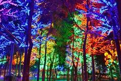 Sztuczny las Obraz Royalty Free