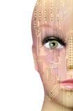 sztuczny móżdżkowy obwodów pojęcia elektronicznej inteligenci mainboard Fotografia Stock