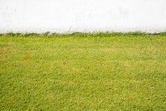 Sztuczny trawy pole, ściana i zdjęcie stock
