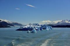 Sztuka lodowy rytownictwo Obraz Stock