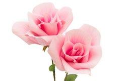 Sztuka projekta menchii róży papier Zdjęcia Stock