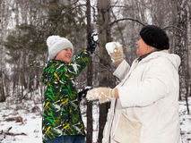 Sztuka snowballs Zdjęcie Royalty Free