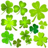 sztuka z zielonym liść koniczyny magazynki Zdjęcia Royalty Free