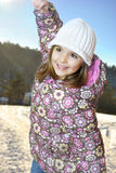 sztuka zima Fotografia Stock