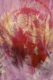 sztuki abstrakcjonistycznej tło Zdjęcia Royalty Free