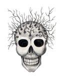 Sztuki czaszka surrealistyczna Zdjęcie Stock