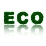 sztuki eco podłoga zieleni gazonu liść życia miłości wh Zdjęcie Royalty Free