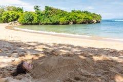 Sztuki fotografia zakopująca w piasku piękna dama zdjęcia stock