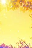 Sztuki jesieni liści tło Zdjęcie Royalty Free