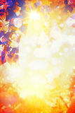 Sztuki jesieni miękkiej części kolory w lesie Obraz Stock