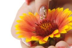 sztuki kwiatu gwóźdź Zdjęcie Stock