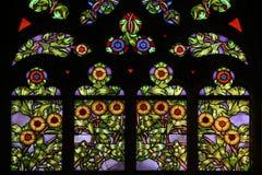sztuki kwiecisty nouveau wzór okulary oznaczony przez okno Obraz Royalty Free