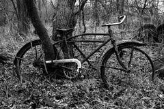 Sztuki Piękna fotografii Stary rower zdjęcie stock