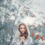 sztuki piękna mody wysokości klucza makeup zima Zdjęcie Stock