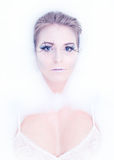 sztuki piękna mody wysokości klucza makeup zima Fotografia Stock