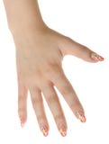 sztuki rumianku żeńska postać ręka gwóźdź Zdjęcie Stock