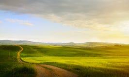Sztuki wiosny wiejska droga i ziemia uprawna; tuscany wsi toczni wzgórza obraz stock
