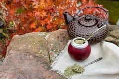 Szturman herbata w kalabasie na kamiennym stole w ogródzie Fotografia Stock