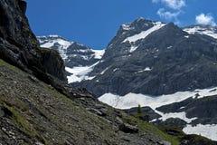 Szwajcar Alsp Zdjęcia Stock
