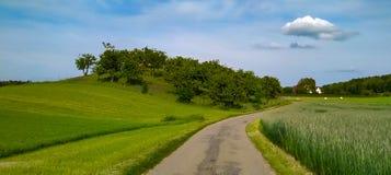 Szwajcaria krajobraz przy wiosną obrazy stock
