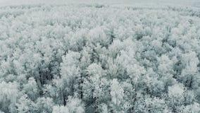 Szwajcaria zimy krajobrazu anteny strzał 4K zbiory wideo