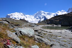 Szwajcarscy Alps wycieczkuje ścieżkę Obrazy Stock