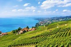 Szwajcarska wioska blisko Lavaux winnicy Tarasuje wycieczkujący ślad w Szwajcaria Obrazy Stock