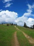 Szwajcarska zbocze ścieżka Fotografia Stock
