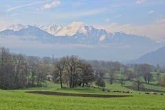 Szwajcarska ziemia uprawna Zdjęcia Stock