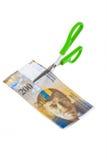 Szwajcarski frank Zdjęcia Stock