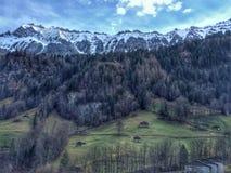 Szwajcarski góra krajobraz Obraz Stock