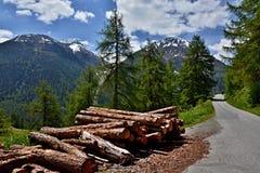 Szwajcarski widok ścieżka Bos Obraz Royalty Free
