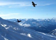 szwajcarskie alpy lanscape serii Zdjęcia Royalty Free