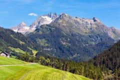 Szwajcarskie góry z zieleni ziemi krajobrazem Zdjęcie Royalty Free