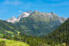 Szwajcarskie góry z zieleni ziemi krajobrazem Obraz Stock
